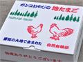 【有精卵】 20個入り化粧箱