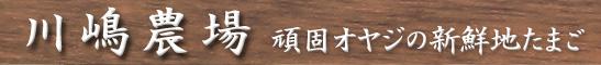 川嶋農場 頑固オヤジの新鮮地たまご