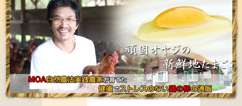 MOA自然農法実践農家が育てた健康でストレスのない鶏の卵の通販
